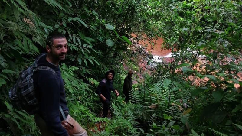 Amazzonia - Guglielmo Rapino