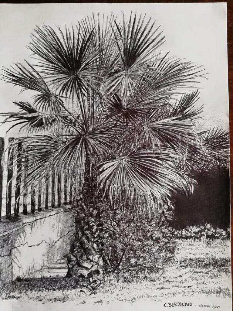 Palma di Carlo Bertolino